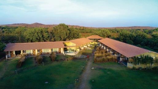 Asiatic Lion Lodge Sasan Gir